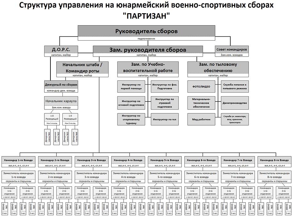 Структура ЮВСЛ ПАРТИЗАН.png