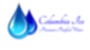 Website Logo blue (1).png