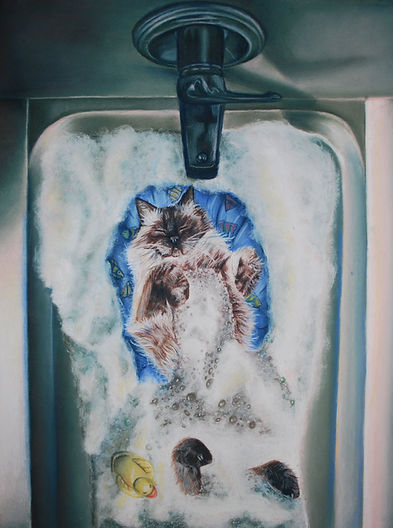 Bubble Bath Cat.jpg