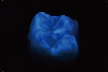 Biomic - 英文-69.png