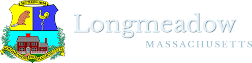 townoglongmedow.png