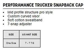 snap back chart.jpg