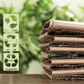 Eco Packaging.jpg