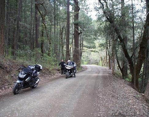 Deerlick Springs Knob Rd along Browns Creek