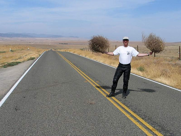 The author avoiding blowing tumbleweeds along Hwy 58