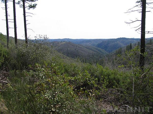 View of Yuba River Canyon