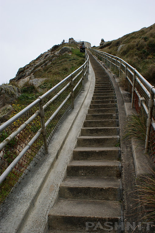 Point Reyes Lighthouse Stairs