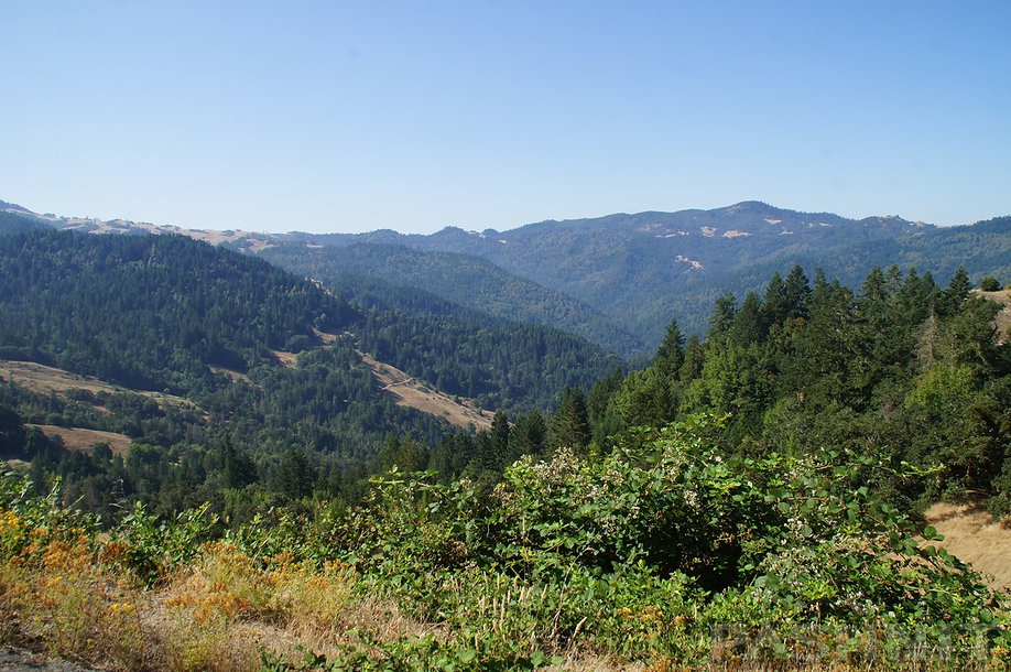 Trinity County Mountains