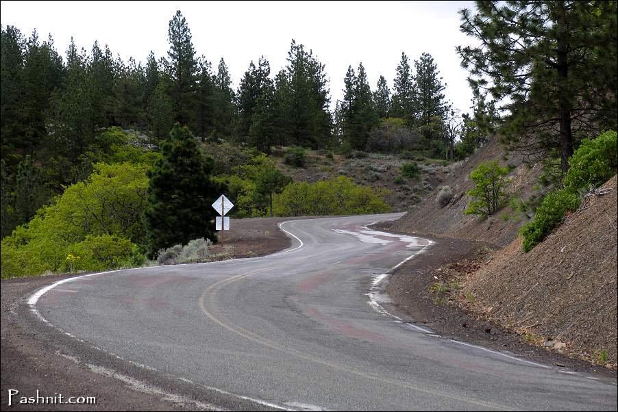 The author of Pashnit on  Highway 3 Hayfork Pass, California