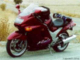Kawasaki ZX-11D Motorcycle