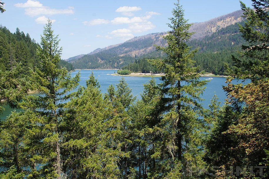 Ruth Lake, Trinity County, California