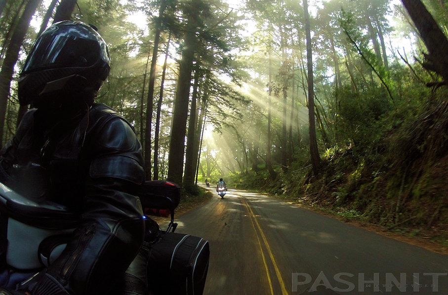 Ridgecrest Blvd through the redwoods north end of Bolinas Ridge