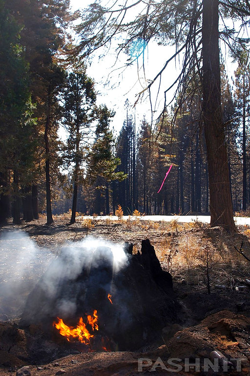 Spot fires still burning a month after the 2014 King Fire