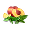 Peaches and Mint.png