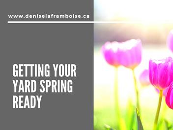 Getting Your Yard Spring Ready