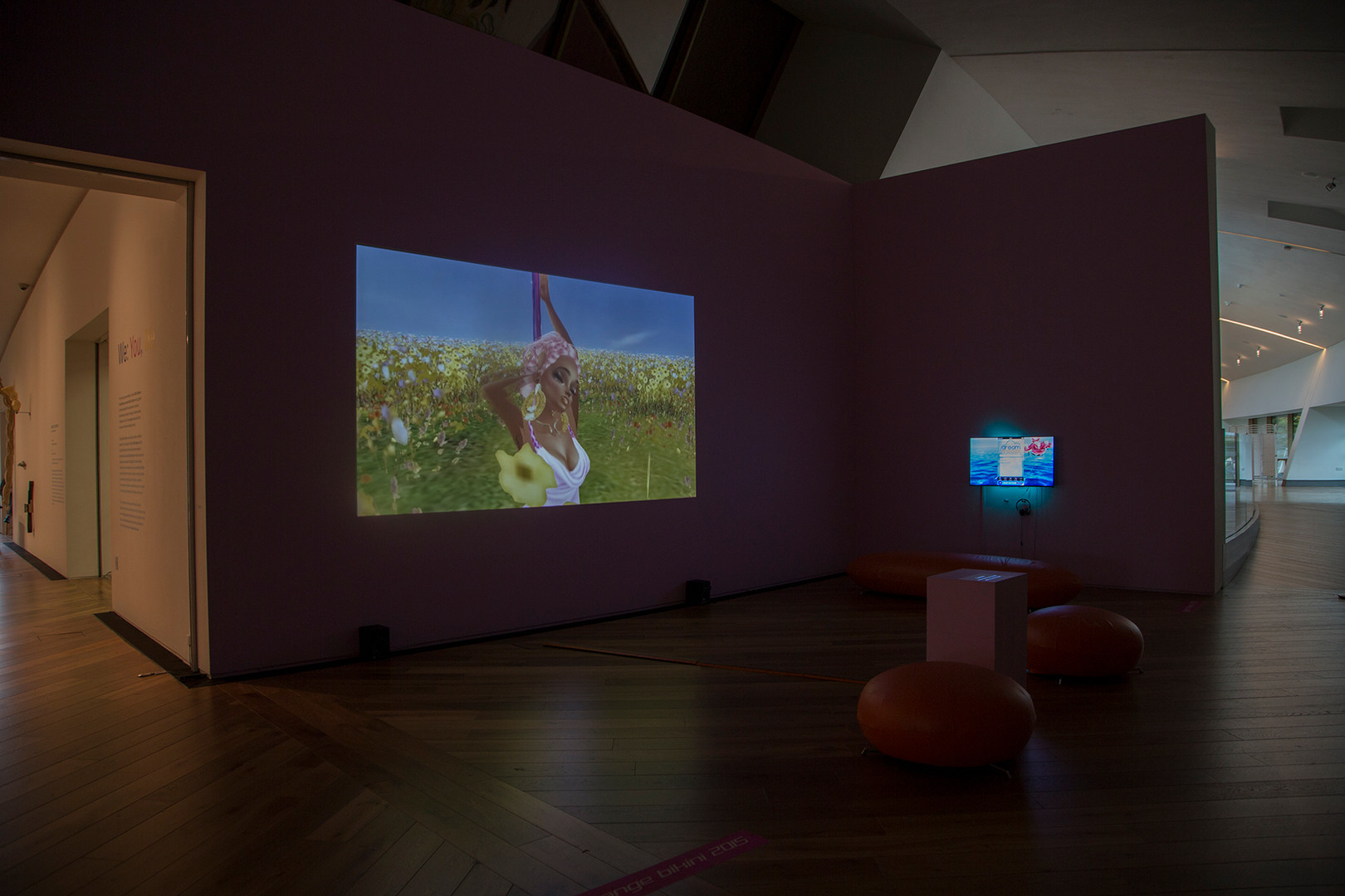 Orange Bikini and Gym Class, installation view