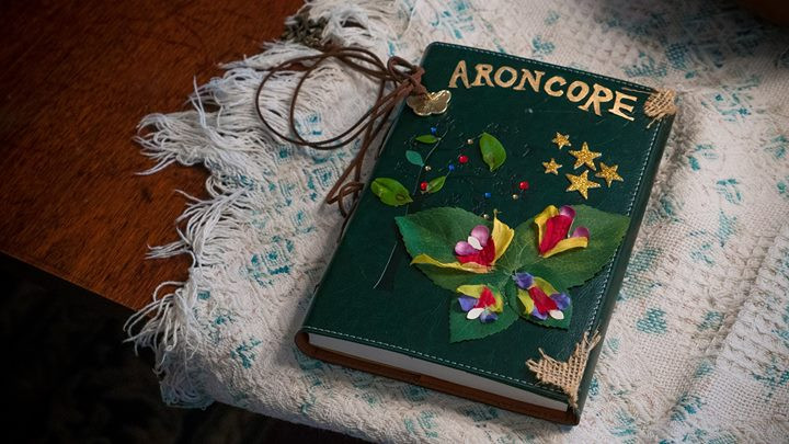 Lucy's Aroncore book, one of the funnest