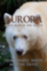 Aurora 200x300.jpg