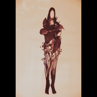 la métamorphose de Daphné