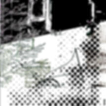 imageprogramme.jpg