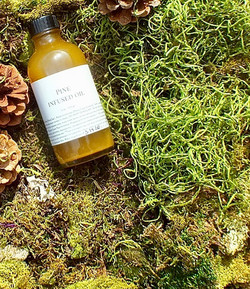 pine infused herbal chest oil pine sap a