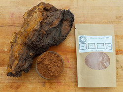 chaga and cococa with large chaga musrro