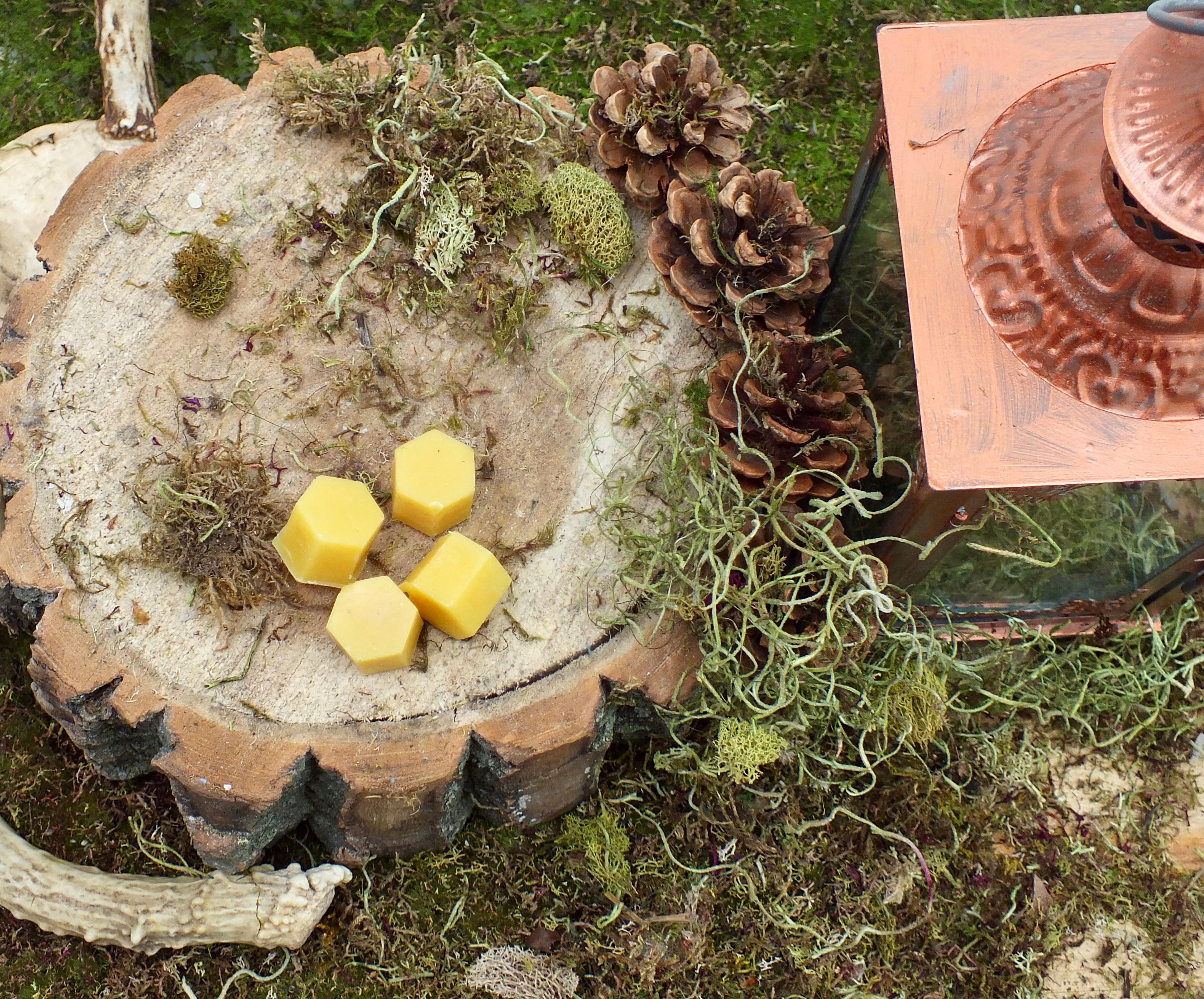 beeswax hexagon shape for herbal learnin