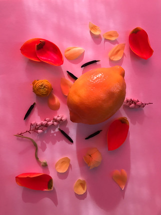 pink_lemon.jpg