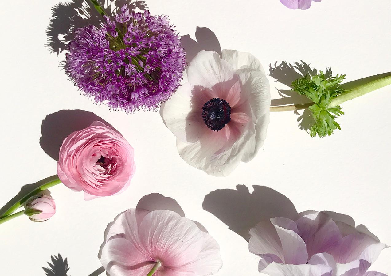 floral29.jpg