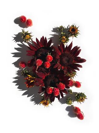 floral24.jpg