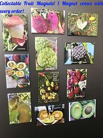 Magnets Fruits FFRF_edited.jpg