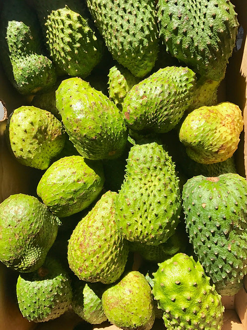 Soursop/Guanabana (Wholesale delivery in Florida)