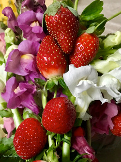 Strawberries & flowers FL