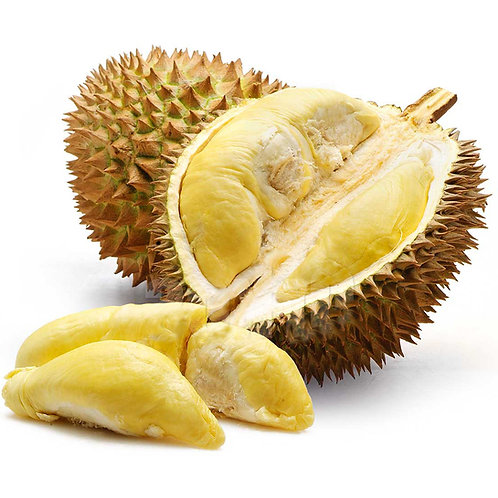 Durian Fresh Rare Free Shipping!