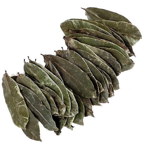 Certified Organic Sour Sop leaves