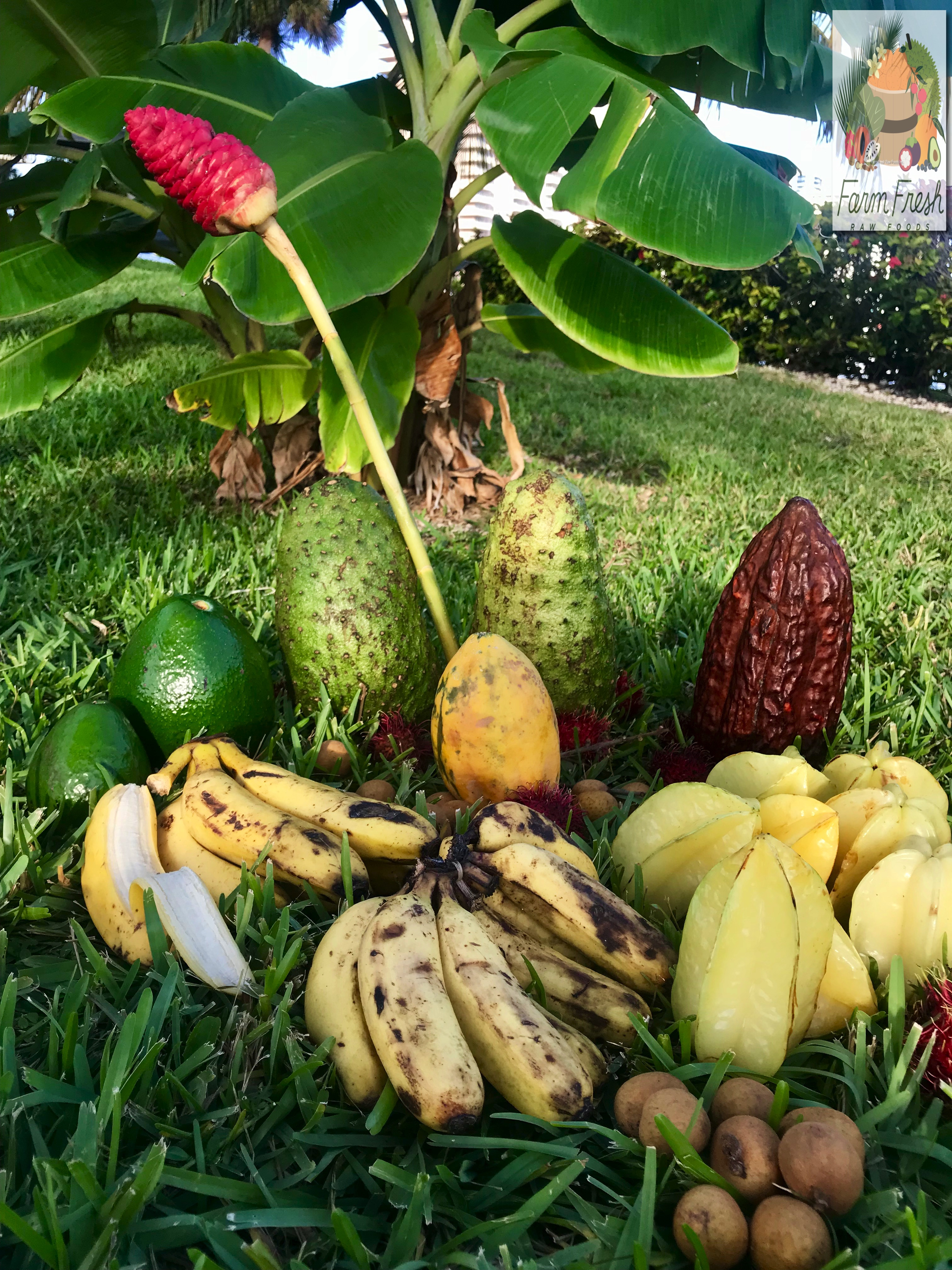 Variety of tropical fruits 1