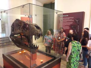 Sala da cabeça do Tiranossauro rex