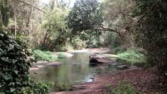 Trecho do Rio Timbuí
