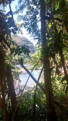 Vista Rio Timbuí que corta a Estação
