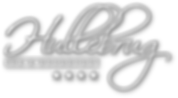 Hullebrug logo single DROP SHADDOW WIT.p