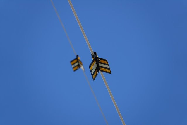 Bird Flight Diverters