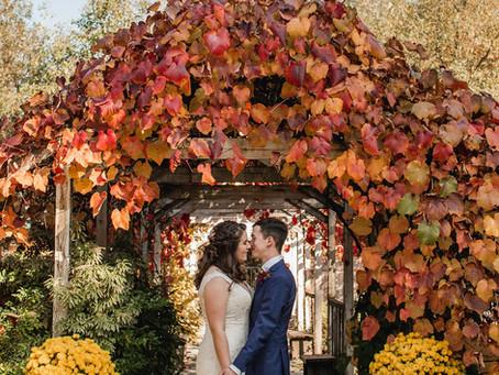 A Garden Full of Autumn