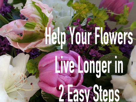 Help Your Flowers Live Longer: Part 1- Water