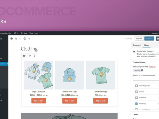 WordPress eCommerce Plugins To Boost Sales And Marketing