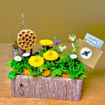 Bee Garden ~ Click to Order on our Shopping Site>