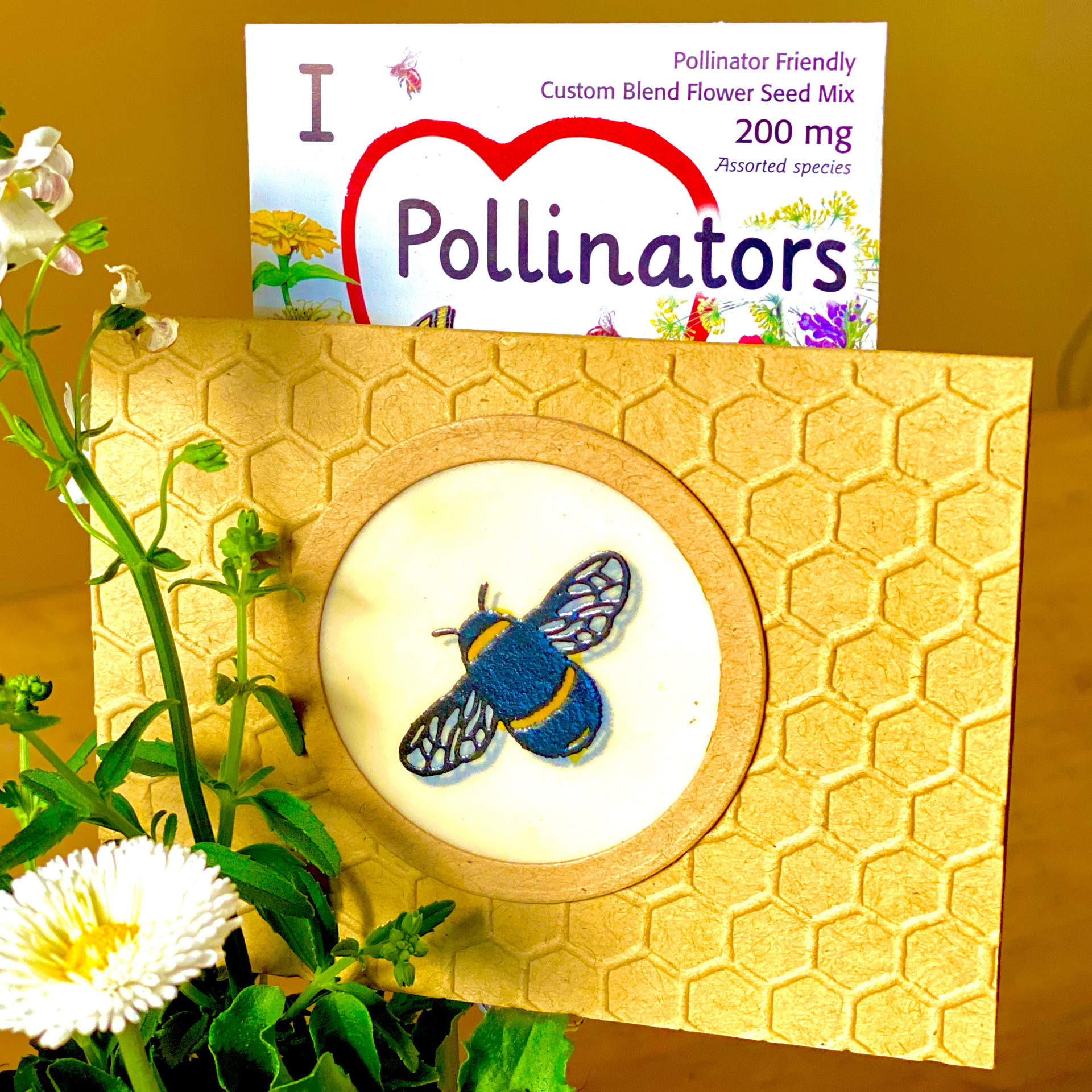 Handmade Card and Pollinato Seeds with Garden