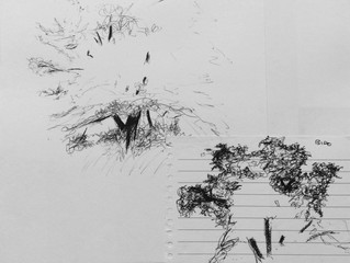 Sketching Trees - exercise 1
