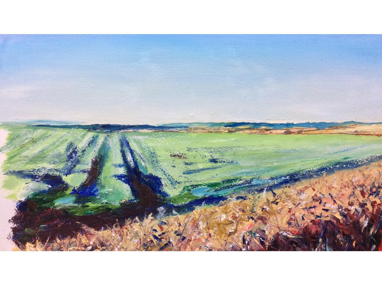 December fields