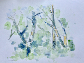 Study of several trees/ ii.