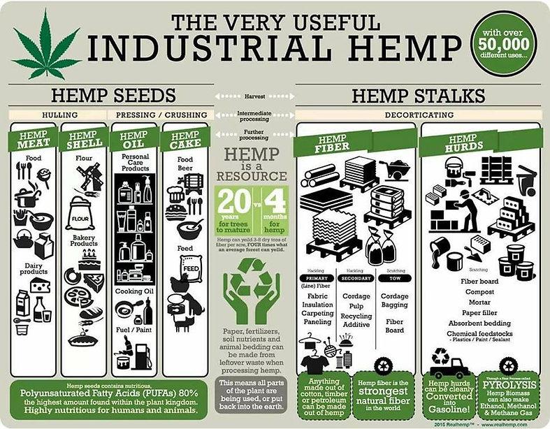 Hemp+uses+chart+Cannabis+Info+Ed.jpg
